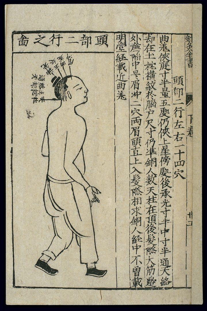 L'OMS introduce la Medicina Tradizionale Cinese